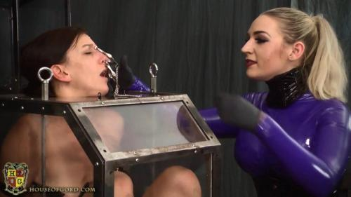 Bound in the Box – Elise Graves, Ruby. 14 Dec 2017. Houseofgord.com (269 Mb)