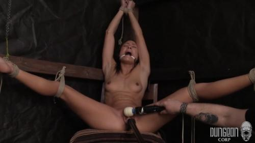 The French Damsel – Cassie Del Isla. Dungeoncorp.com (1174 Mb)