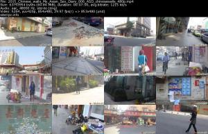 118238599_2015_chinese_walls_my_asian_sex_diary_006_asd_chinesewalls_480p_s.jpg