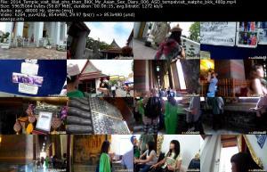 118238704_2014_temple_visit_wat_pho_then_bkk_my_asian_sex_diary_006_asd_tempelvisit_watpho.jpg