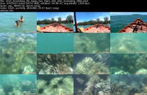 118238723_2014_snorkeling_my_asian_sex_diary_006_asd_snorkeling_480p_s.jpg