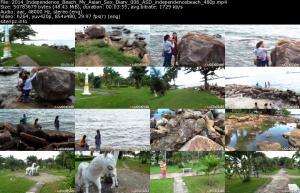 118238882_2014_independence_beach_my_asian_sex_diary_006_asd_independencebeach_480p_s.jpg