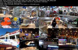 118238948_2014_chinese_food_mall_my_asian_sex_diary_006_asd_chinesefood_mall_480p_s.jpg