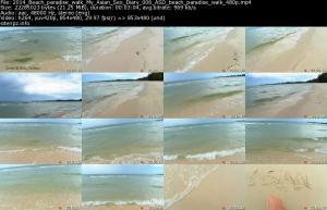 118238971_2014_beach_paradise_walk_my_asian_sex_diary_006_asd_beach_paradise_walk_480p_s.jpg