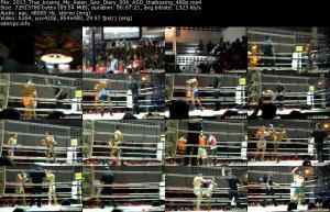 118239062_2013_thai_boxing_my_asian_sex_diary_006_asd_thaiboxing_480p_s.jpg