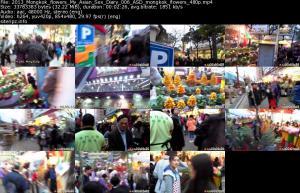 118239169_2013_mongkok_flowers_my_asian_sex_diary_006_asd_mongkok_flowers_480p_s.jpg